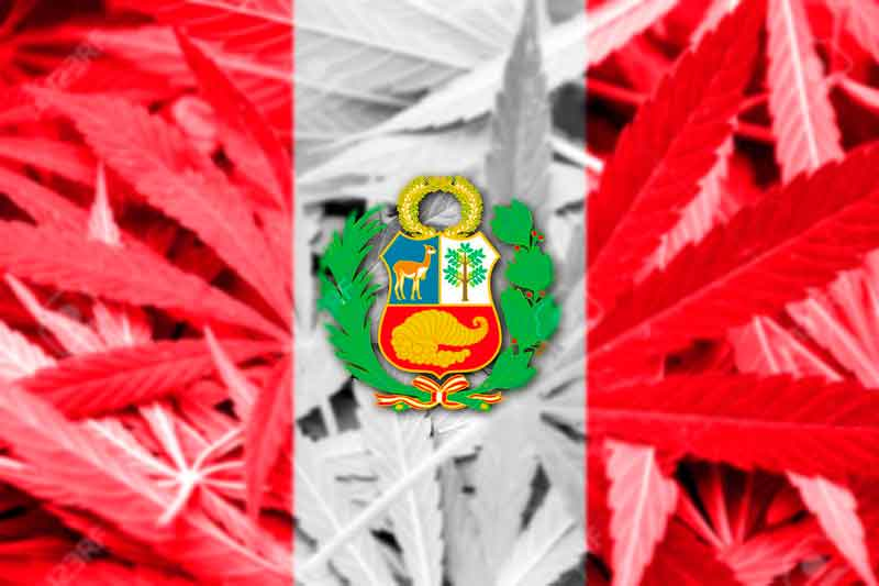 Peru approves the medicinal use of cannabis